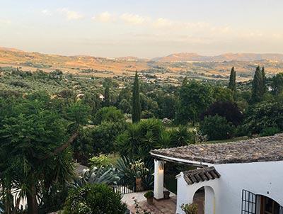 Spanischer Wein in Pinoso